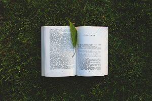 洋書と葉っぱの写真