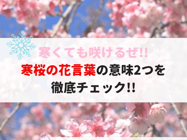 寒桜の花言葉